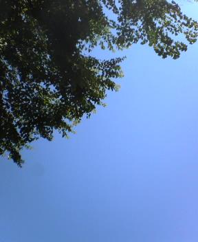 雲     な〜〜〜し!