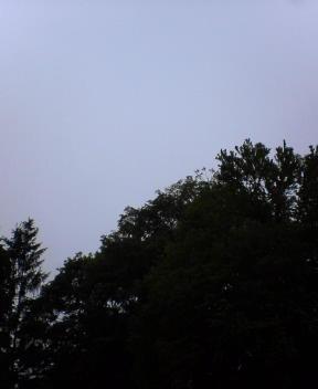 エゾ梅雨?