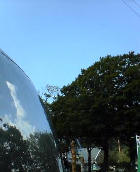 今朝の円山動物園
